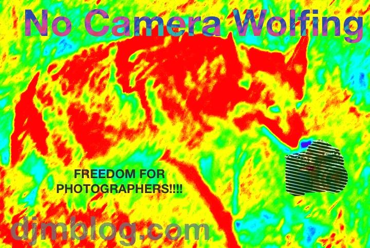 camerawolf
